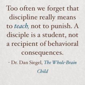 discipline-3